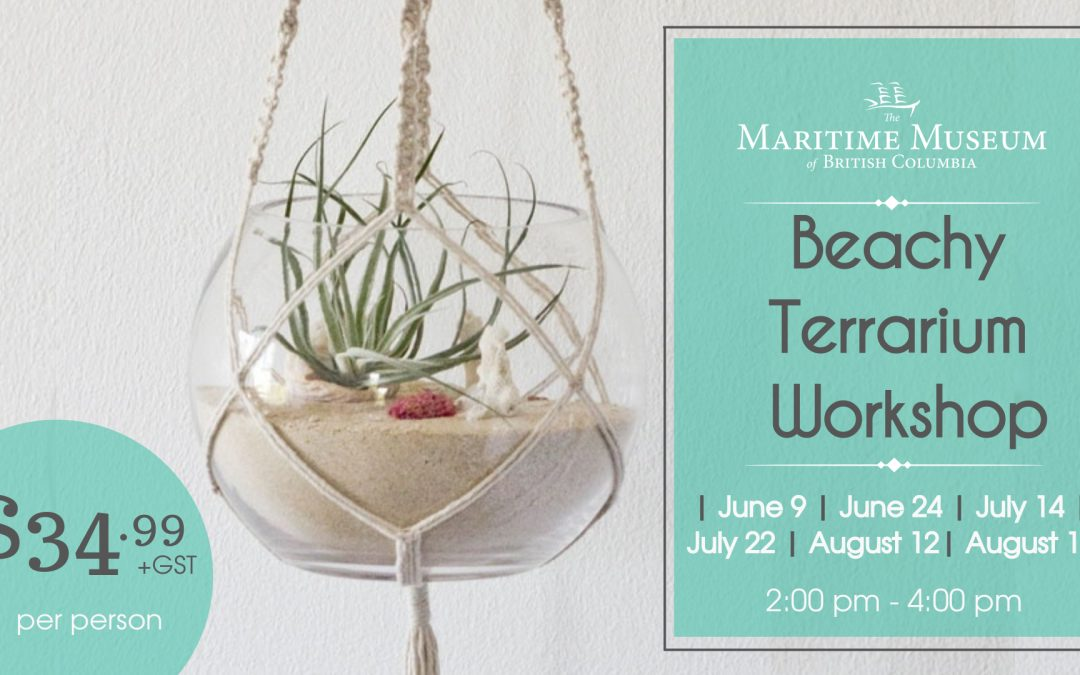 Beachy Terrarium Workshop